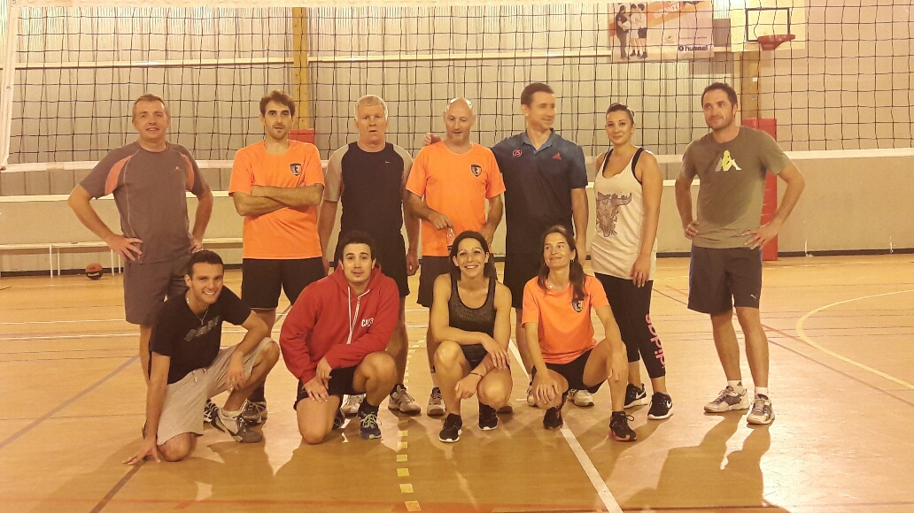 Section volley
